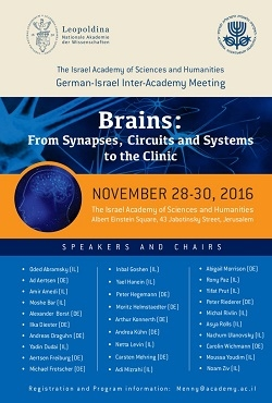 Brains: From Synapses, Circuits and Systems to the Clinic